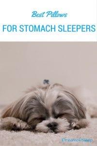 best pillows stomach sleepers (2)