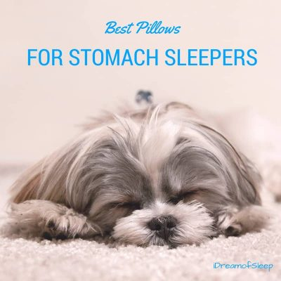 Best Pillows Stomach Sleepers Need to Sleep Pain Free