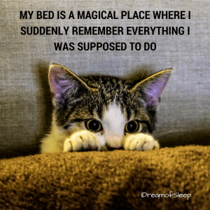 Funny thoughts make you have sleepless nights meme