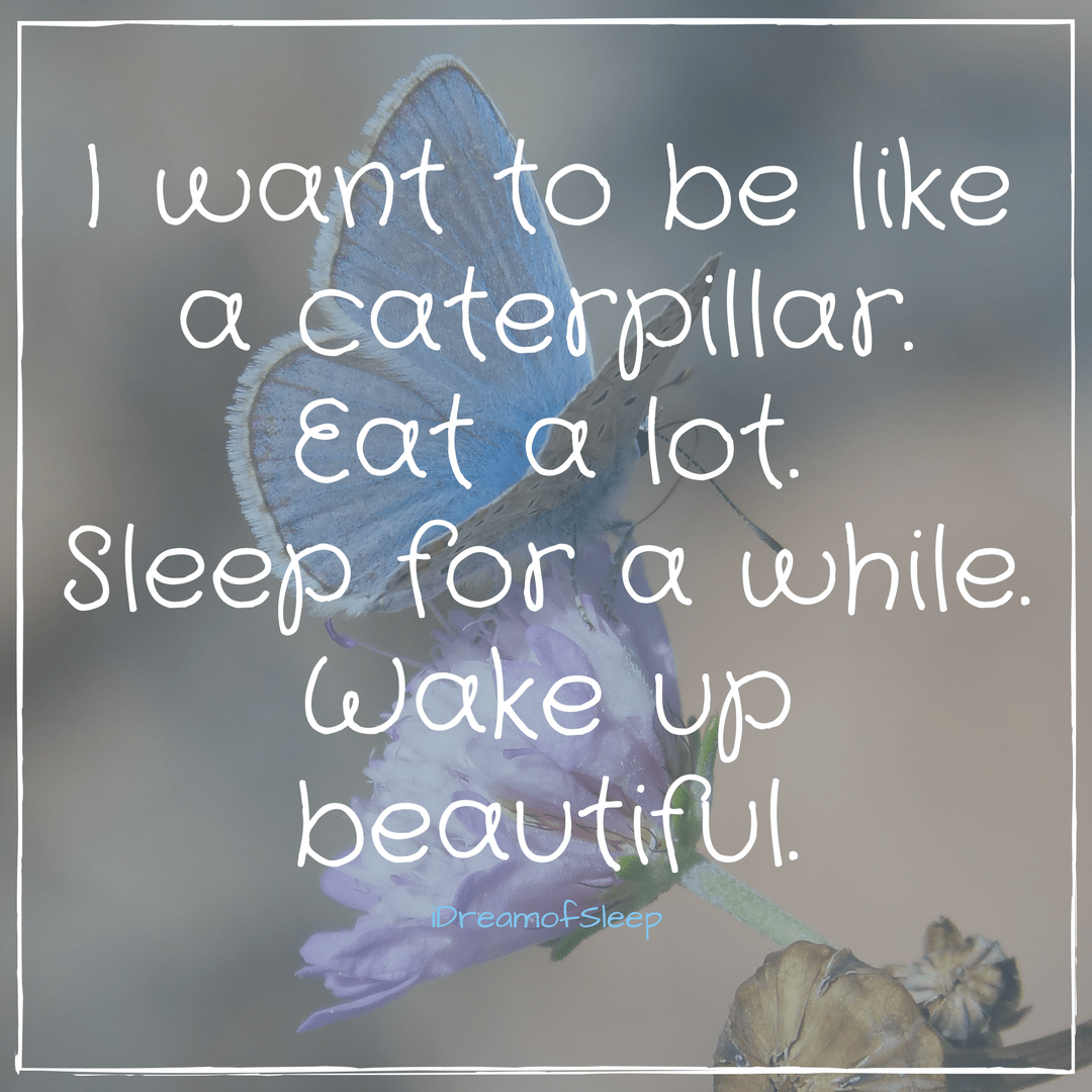 Funny Cant Sleep Quotes: I Just Want To Go To Sleep And Wake Up Beautiful Insomnia